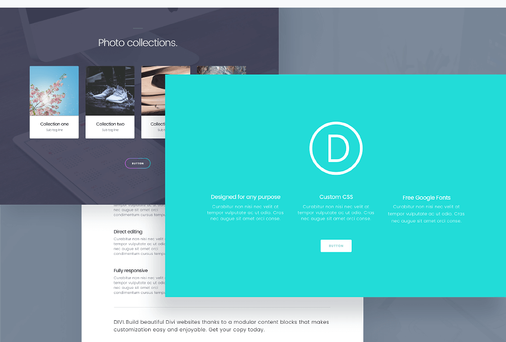 Divi Theme Review- The Professional Theme & Visual Page Builder