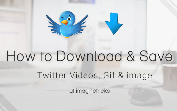 How to Save Gifs from Twitter for Offline Watching?